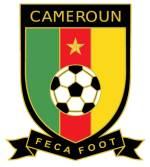 Convocati Camerun Mondiali 2010