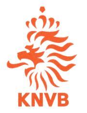 Rosa Convocati Olanda Europei 2012