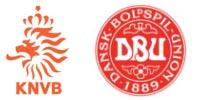 Olanda - Danimarca 2-0, Gruppo E Mondiali 2010